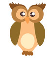 brown big owl on white background vector image