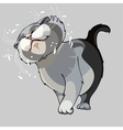 cartoon cat shakes vector image vector image