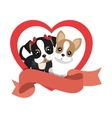 cute dogs isolated icon vector image