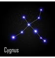 Cygnus Constellation with Beautiful Bright Stars vector image vector image