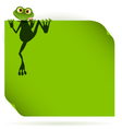 frog on a green leaf vector image vector image