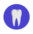 teeth icon dentist flat sign or symbol for vector image vector image