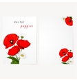 Template card with chamomile and red flowers vector image vector image
