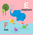 alphabet letter f-fish e-elephant vector image vector image