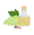 grapeseed organic oil in glass bottle vector image vector image