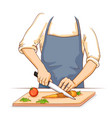 human hand chopping and cutting fresh vegetable vector image vector image