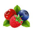 ripe berries raspberry blueberries and cherry vector image vector image