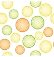 Seamless citrus background vector image