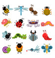 cartoon bugs and insects set vector image