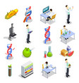genetically modified organisms isometric icons vector image