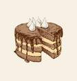 chocolate cake hand drawn vector image vector image