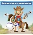 Cowboy rider on a young Bay Mare vector image vector image