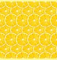 lemon slices seamless pattern vector image vector image