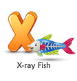 letter x is for x-ray fish cartoon alphabet vector image vector image