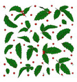 set holly ilex branch with berry and leaves on vector image