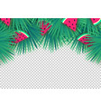 summer palm leaves with watermelon slices on vector image vector image