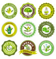 tea tree emblem set vector image vector image