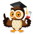 owl cartoon wearing graduation cap vector image