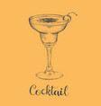 cocktail sketch cherry sketch cocktail vector image