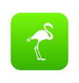 flamingo icon digital green vector image vector image
