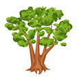 green tree icon bright landscape and wood vector image vector image
