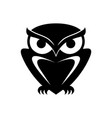 owl s vector image