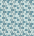 Seamless pattern with hexagon shapes vector image vector image