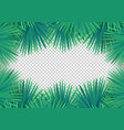 summer palm leaves on transparent background vector image vector image