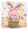 cute rabbit in a box vector image