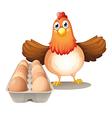 Cartoon Hen Eggs vector image vector image