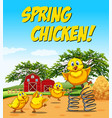 idiom poster for spring chicken vector image vector image