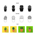 isolated object of cactus and pot symbol vector image vector image