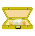 Valise with money vector image vector image
