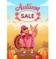 banner for autumn sale with dancing cool turkey vector image