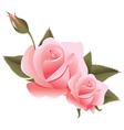 flower design element vector image vector image