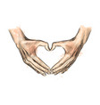 hands in the shape of heart from a splash of vector image vector image