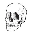 human skull icon medicine and spooky symbol vector image
