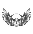 human skull with wings engraving vector image vector image