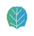 line tropical leaf to exotic and natural design vector image vector image