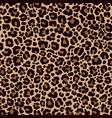 leopard skin pattern vector image
