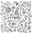 set of hand drawn doodle fruits vector image