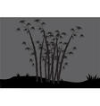 Silhouettes of bamboo in the fields vector image