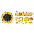 autumn set pumpkins and leaves isolated on vector image