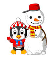 cute penguin and snowman vector image