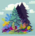 forest with firtree and plants vector image vector image
