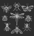 insect set black vector image vector image