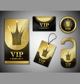 vip member elements design template vector image vector image