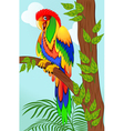 colorful parrot on tree vector image vector image