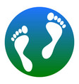 foot prints sign white icon in bluish vector image vector image
