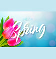 hello spring nature design with beautiful tulip vector image